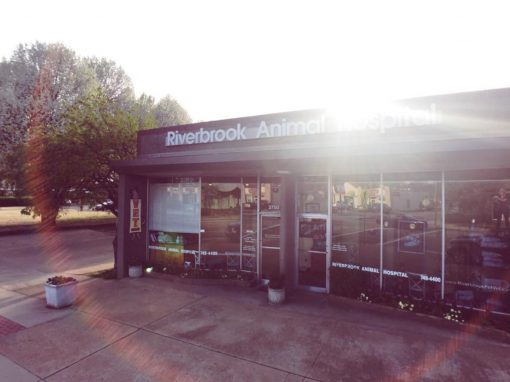 Riverbrook Animal Hospital